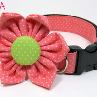 Pink pin dot  dog Collar with flower set ( X-Small,Small Size)- Adjustable