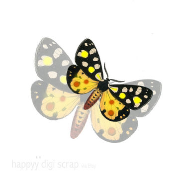 butterfly clip art - instant download - vintage butterfly png - yellow - yellow-black - commercial uses allowed - printable - digital