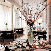Tall Wedding Reception Centerpieces Ideas  http://theweddingfavors.info/tall-wedding-reception-centerpieces.html