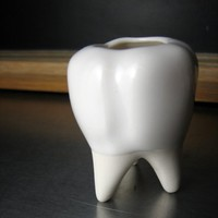 Tooth Vessel - Hollow container with cork lid