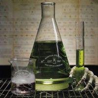 Martha Stewart Halloween Chemistry Drinkware