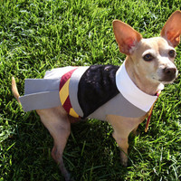 Hermione Granger Harry Potter Dog Costume by GypsyEyesClothing
