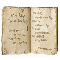 RAZ Open Witch&#x27;s Spell Book Set of 2