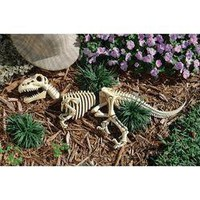 Raptor Skeleton Garden Sculpture - DB383021                    - Design Toscano