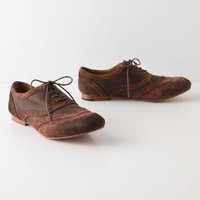 Autumn Flower Wingtips - Anthropologie.com