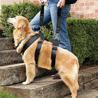Dog Accessories / Back-Saving Assist Harness -- Orvis