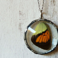 Real Butterfly Wing Necklace. Sterling Silver Chain.Natural History. Woodland Butterfly Jewelry