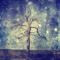 As old as time / Tree of the Universe Art Print by Textures&Moods by Belle13 | Society6