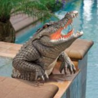 Garden Animal Statue | Snapping Swamp Gator Statue