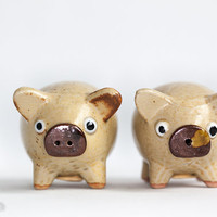Ceramic Pig Salt and Pepper Shaker Set