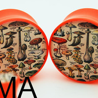 Vintage Book of Mushrooms BMA Plugs 2g 6mm by BMAmod on Etsy