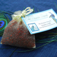 Aroma Bead Sachet, Air Freshener, Pumpkin Souffle Scented