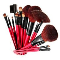 Amazon.com: SHANY Professional 13-Piece Cosmetic Brush Set with Pouch, Set of 12 Brushes and 1 Pouch, Red: Beauty