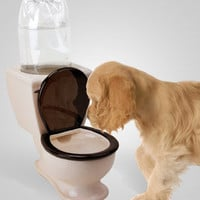 Toilet Doggie Water Dish