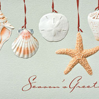 Sea Shells Embossed Christmas Cards | OceanStyles.com