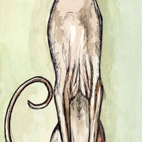 A Little Curiosity - Sphynx Cat Art print