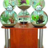 Rare Aquarium - Opulentitems.com
