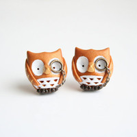 Owl stud earrings, Albert the Owl