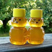 Wedding Favors 96 Raw Wildflower Honey 2oz Jars Raw Honey Tennessee Wildflower Honey Bear Favors Custom Labels