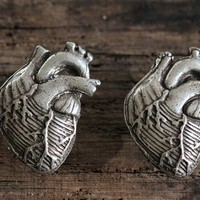 Anatomical Heart Cabinet Hardware 