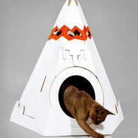 Native American Cat Teepee