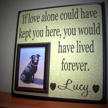 inspirational quotes loss of pet quotesgram