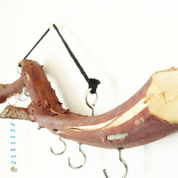 Manzanita Tree Branch Hanger - Jewelry, Scarves, Beanies - Jewelry Display - Home Decor - Wall Decor - Natural - Cottage Chic
