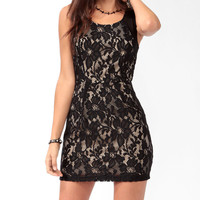 Mesh Panel Lace Mini Dress