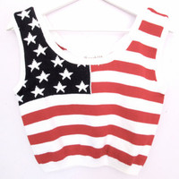 90's American Flag Crop Top