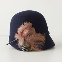 Finely Feathered Cloche - Anthropologie.com