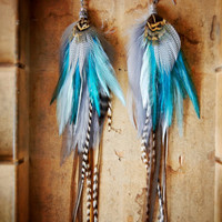 SALE: 15% OFF the ENTIRE shop - Minted Dove Long Feather Earrings