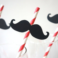 SALE - Photo Booth Props - Mustache Straw Photo Props - Set of 5 - Mustaches on RED Striped Paper Straws