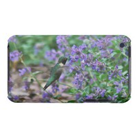Hummingbird Photograph iPod Case iPod Touch Case-Mate Case from Zazzle.com