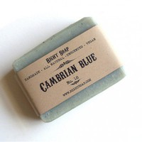 Cambrian Blue Soap (No.18)