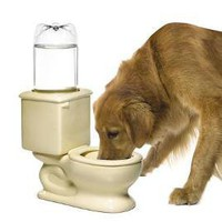 Toilet Dog &amp; Cat Water Bowl 