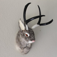 Gray Grey Jackalope Head Mount Rabbit with Antlers Furry Animal Figurine Cabin Decor