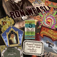 The Noble Collection: Ron Weasley Artefact Box