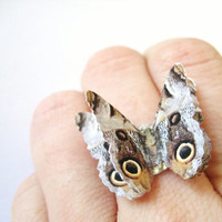 Owl Print Butterfly Nature Ring Brown Neutral by SpotLightJewelry