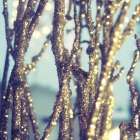 sparkle branches 