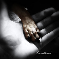 Unconditional by 1CautionArtistAtPlay on Etsy