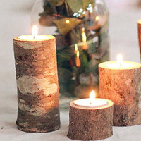 Natural wood tree branch tea light candle holders