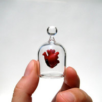 Anatomical Heart in a Jar Hand Blown Glass Miniature by kivaford
