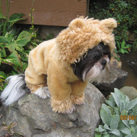 Wizard of Oz Lion Dog Costume size Small by sewdoggonecreative