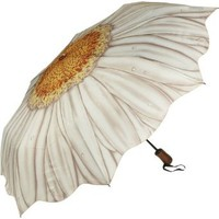 Amazon.com: Galleria White Daisy Folding Umbrella - White Daisy: Clothing
