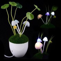 Romantic Avatar Mushroom LED Night Lamp [#00300070] - US&amp;#36;7.94 : Amazplus.com