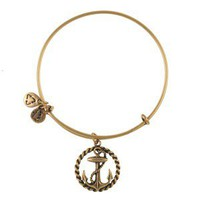 Nautical Bangle - Alex and Ani