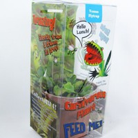 "9GreenBox - Venus Fly Trap w/ Gift Box Packing Large 3"" Pot CARNIVOROUS DIONAEA"