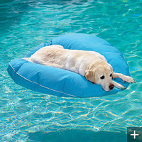 Dog Pool Float and Lounger - Frontgate