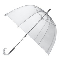 Clear Bubble Umbrella - Silver Ombre Trim