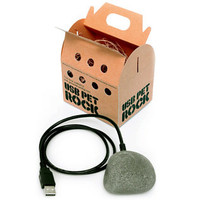 USB Pet Rock - buy at Firebox.com